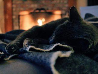 Kamine - viel mehr als nur eine Wärmequelle