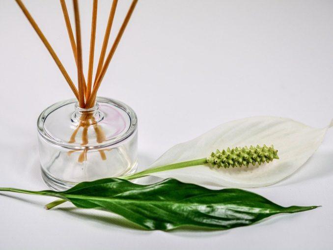 Muffige Luft im Eigenheim - diese Maßnahmen können helfen